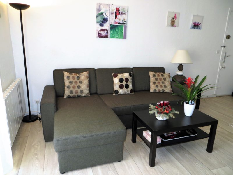 Big convertible sofa